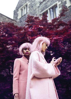 pink portada