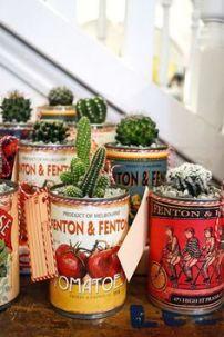 suculentas y cactus en frascos retro